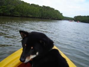 Canoe00