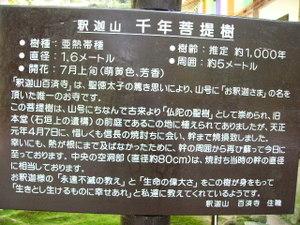 Hyakusaiji04