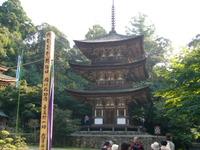 Saimeiji02